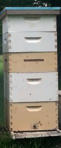 (fig. 1) standard hive configuration